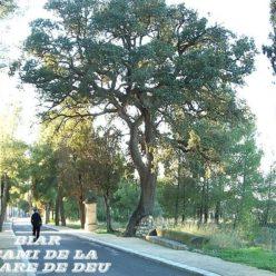 Santuario de Biar, una paseo, año 2003